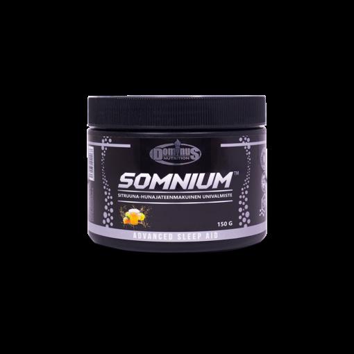dominus-somnium